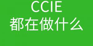 CCIE培训常见问题007-CCIE现在多吗?CCIE一般都是从事什么岗位的