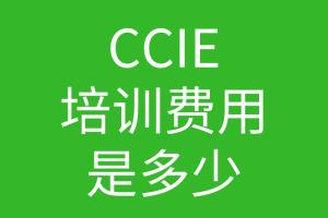 CCIE培训费用一般是多少